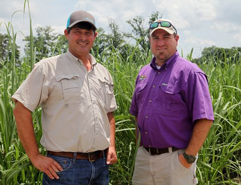 Joby Beaud and Mark Carriere in front of a seedcane plot of new sugarcane variety HoCp 14-885. <br>(Photo courtesy: American Sugar Cane League)